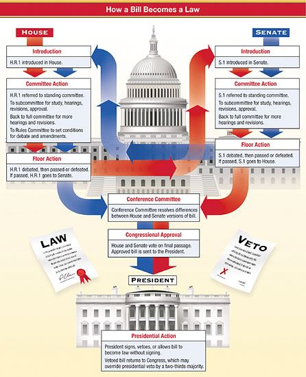Neil Stewart, Congress, Political Infographic, Informational, Visual Data, Directory of Illustration
