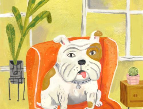 New in the shop: custom pet portraits