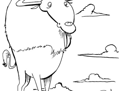 Daily Drawing: Buffalo 14