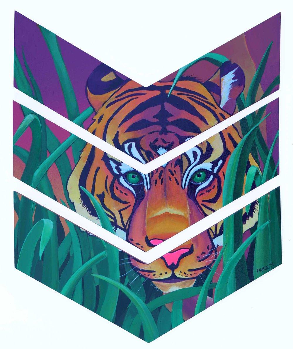 Tiger-2web.jpg