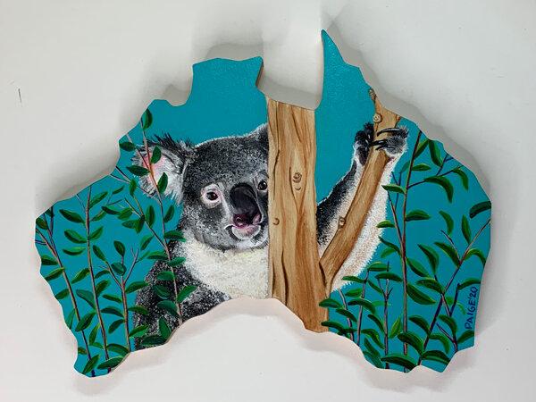 Koala-1web.jpg