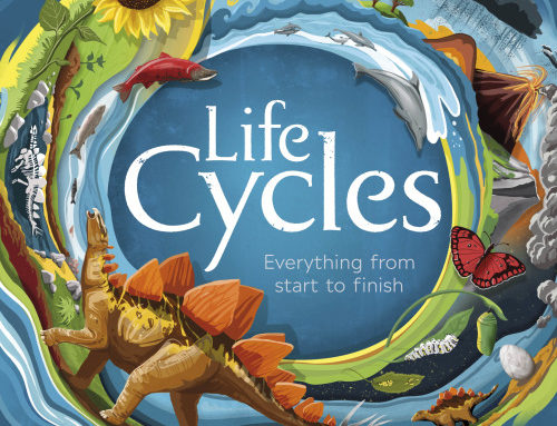 A selection of illustrations from Life Cycles, a book…